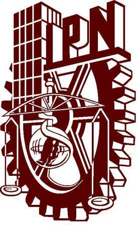 logo_ipn